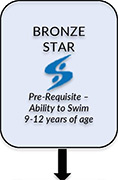Bronze Star Courses