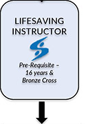Lifesaving Instructor Courses