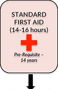 Standard First Aid CPR & AED Courses