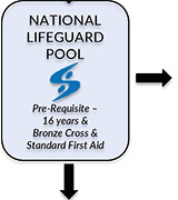 National Lifeguard Pool Option Courses